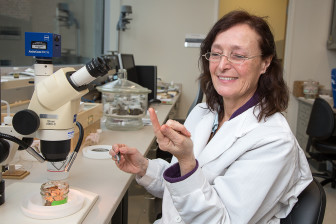 Gale Ridge, entomologist, inspects a bed bug on her finger.